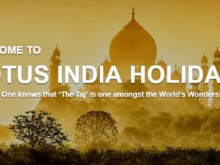 Make your trips more enjoyable through the Lotus India Holidays tour agency