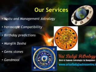 Best Astrologer In Vijayanagar, Bangalore – Srisaibalajiastrocentre.in