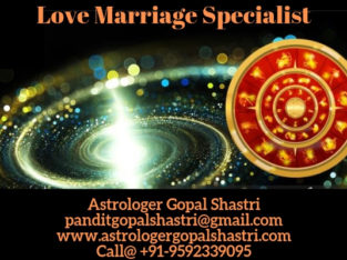 Famous Love Marriage Specialist Astrologer in India