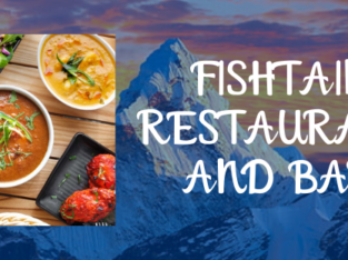 Restaurant & Bar in Cremorne | Fishtail Restaurant