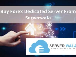Buy Forex Dedicated Server From Serverwala