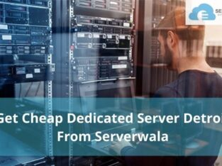 Get Cheap Dedicated Server Detroit From Serverwala