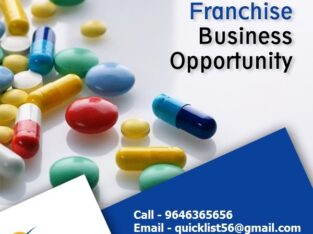 PCD Pharma Franchise Companies – Quick List