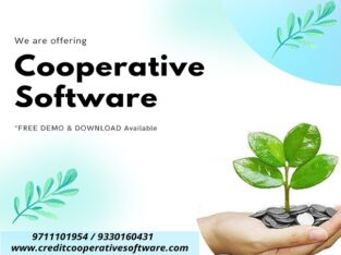 Cooperative Software at Best Rate