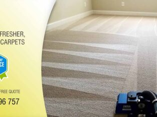 Commercial Carpet Steam Cleaning Services