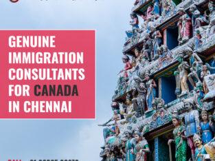 Best Immigration Consultant Chennai