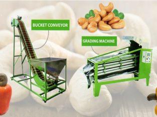 Cashew Processing and Cutting Machines in Gujarat