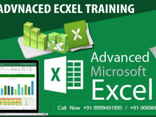 Give Your Career a Remarkable Strength with The Best Excel Institute in Noida
