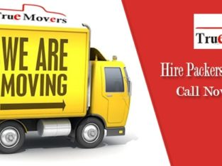 Professional Packers & Movers Bangalore – Truemovers.in