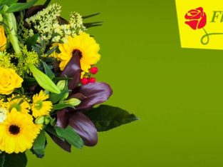 Buy Cake & Flower Delivery on time in Chennai
