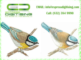 $15 Pro Embroidery Digitizing | Get Your Logo Done