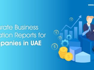 Eminent Business Valuation Companies Based in UAE
